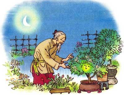 Truyện cổ tích việt nam: sự tích hoa dạ lan hương