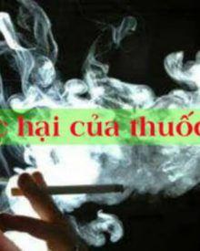 Đầu lọc thuốc lá có tác dụng gì?