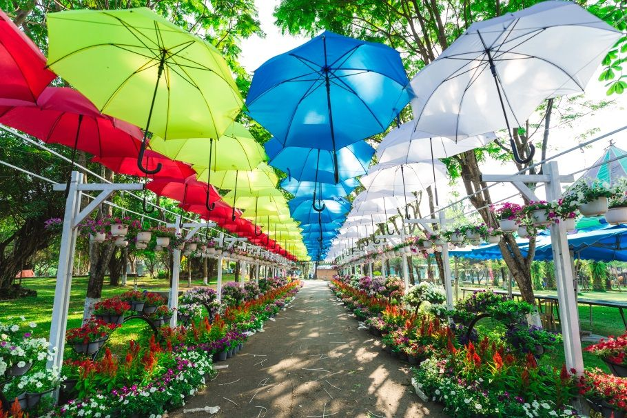 Đổi Gió Với Top 9 Địa Điểm Picnic Cuối Tuần Gần Sài Gòn 14