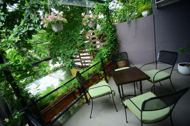 Top 07 Quán Cà Phê Nhiều Cây Xanh Tại Hồ Chí Minh 8