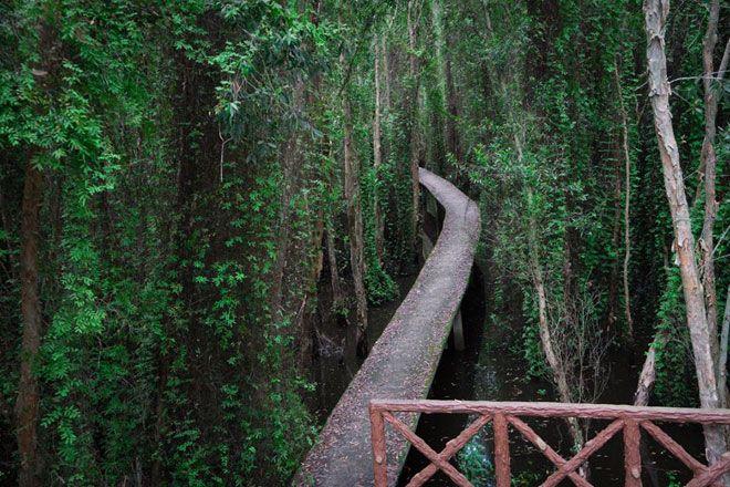 Top 06 Khu Du Lịch Sinh Thái Đẹp Tại Sài Gòn và Tỉnh Lân Cận 5