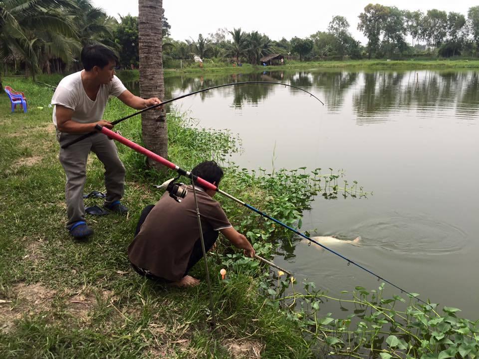 Top 5 Địa Điểm Câu Cá Thư Giãn Nổi Tiếng Được Nhiều Người Tìm Đến Tại Thành Phố Hồ Chí Minh 13