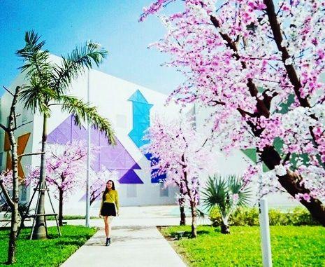 Top 7 Địa Điểm Chụp Hình Đẹp Miễn Phí Ở Đà Nẵng 3